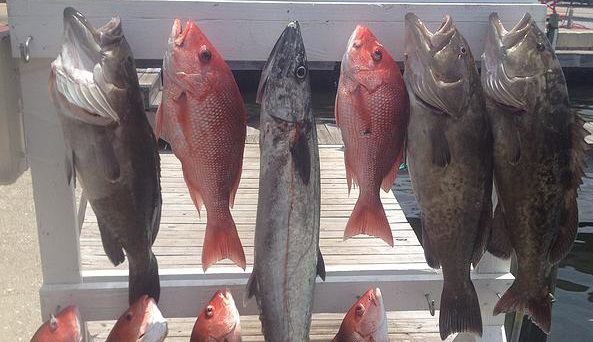 Labor Day Weekend Red Snapper Season