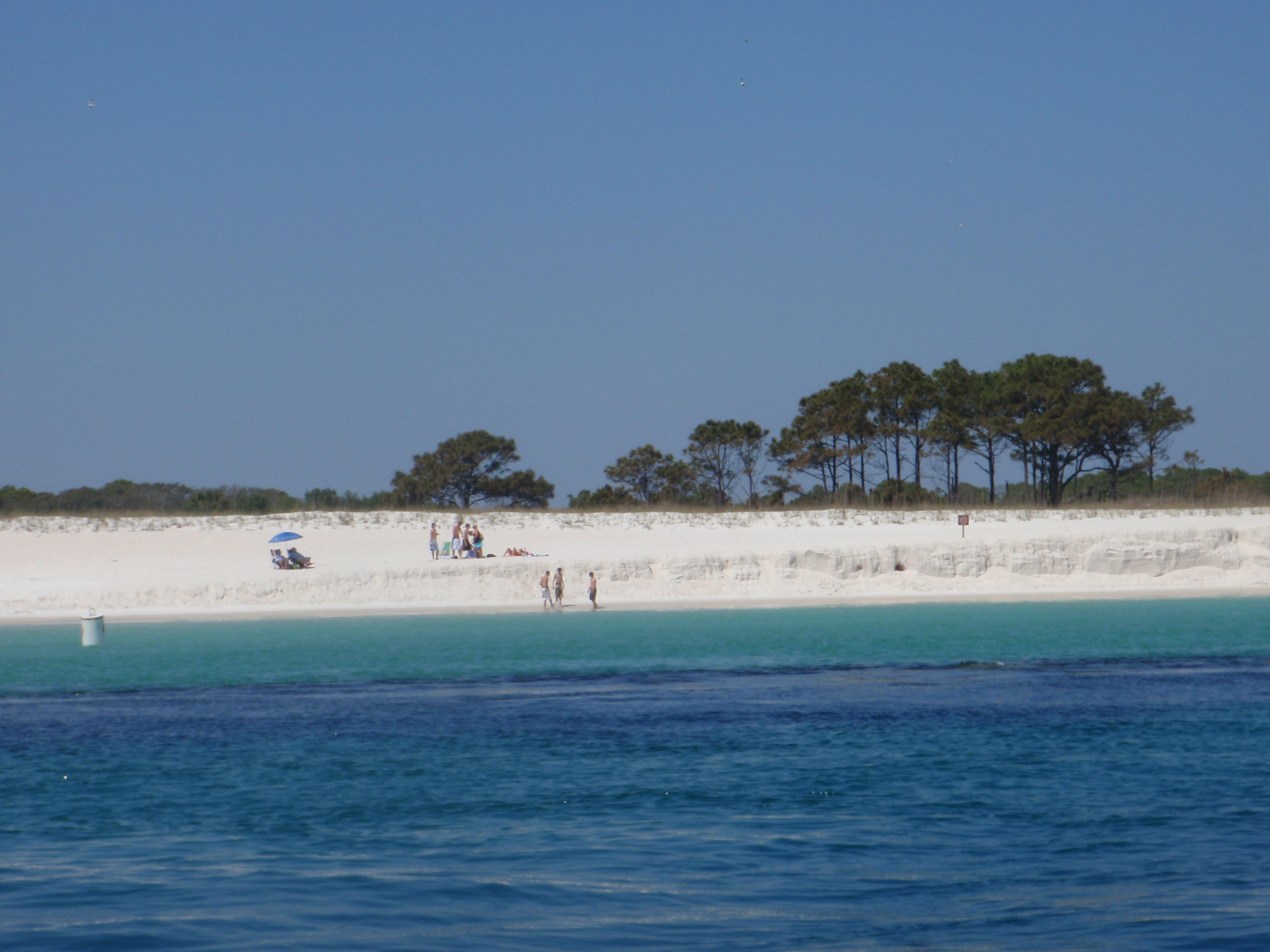 Shell Island Cruises Panama City Beach Fl