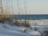 Shell Island White Sands