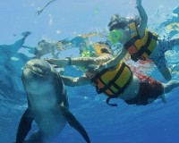 Snorkeling in Panama City
