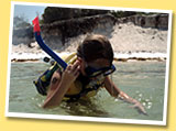 Snorkeling on WaveRunner Tours