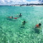 Snorkeling shell island